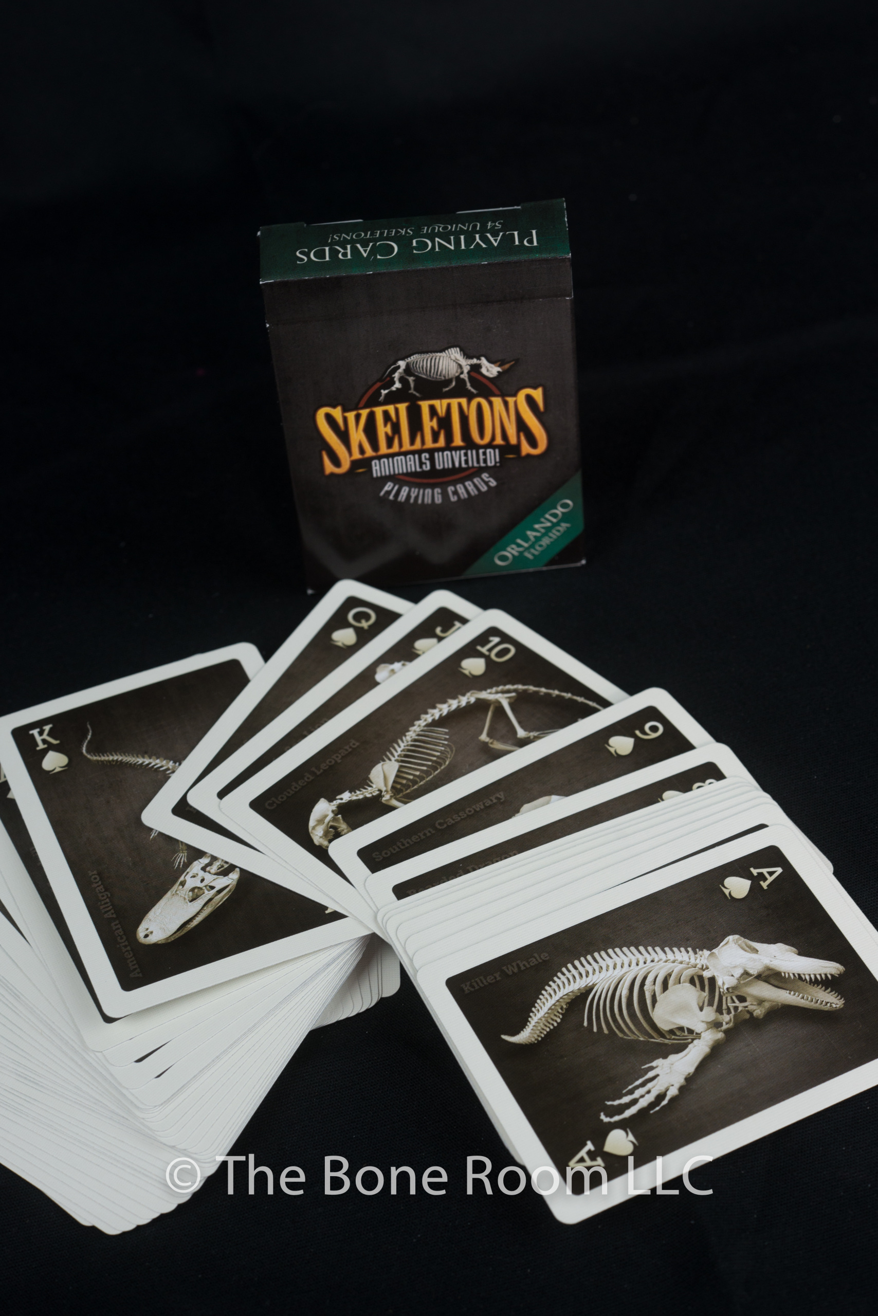 Skeleton Playing Cards