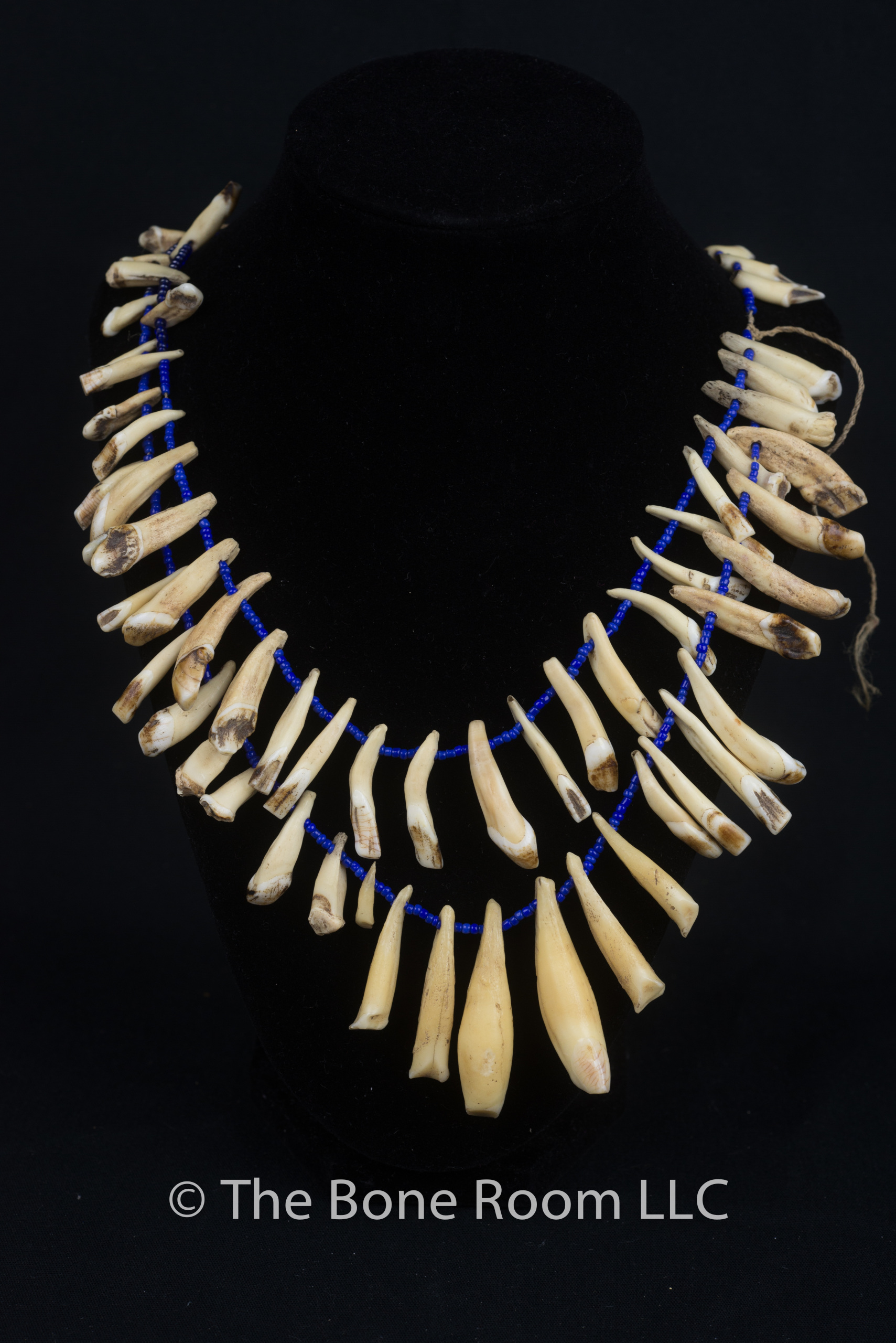 afrikkart camel bone necklace real product
