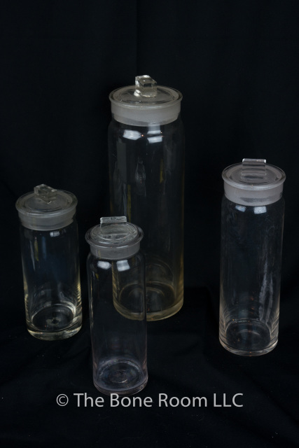 These Antique Apothecary Jars Are Wonderful For Holding Specimens They All Hand N And Have Ground Gl Lids